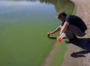 Liberty Lake Algae Bloom Research