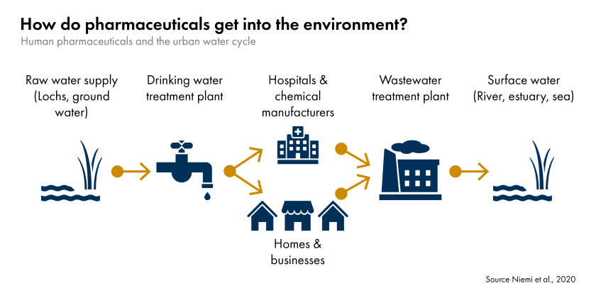 Pharmaceutical pollution urban water cycle